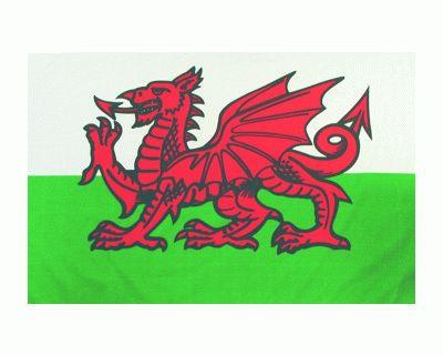Drache (Wales) Fahne / Flagge 60 x 90 cm
